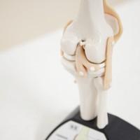 膝関節前十字靱帯(ACL)の再建術(2)~手術方法~